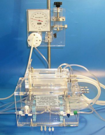 Perfusion Bath for Tubular Organs (PBTO)
