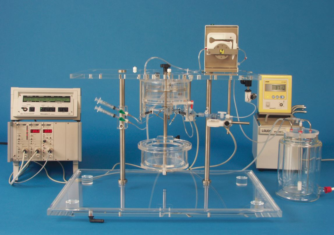 Isolated Heart Perfusion System